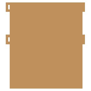 Custom Illustration Icon Gold